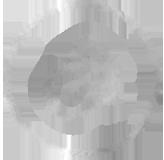 Scroling logo